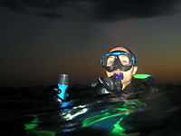 Diver surfacing after a night dive