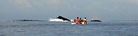 Petites gens, grandes baleines, mer immense - 21/08/09