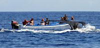 Grosse baleine, petit bateau, moment #3 - 21/08/09