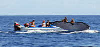 Grosse baleine, petit bateau, moment #2 - 21/08/09