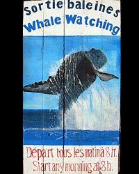 Enseigne a la baleine qui saute