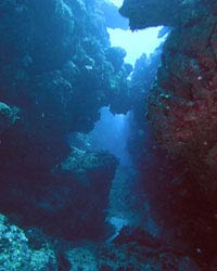 Diving in Walhall, the divers paradise
